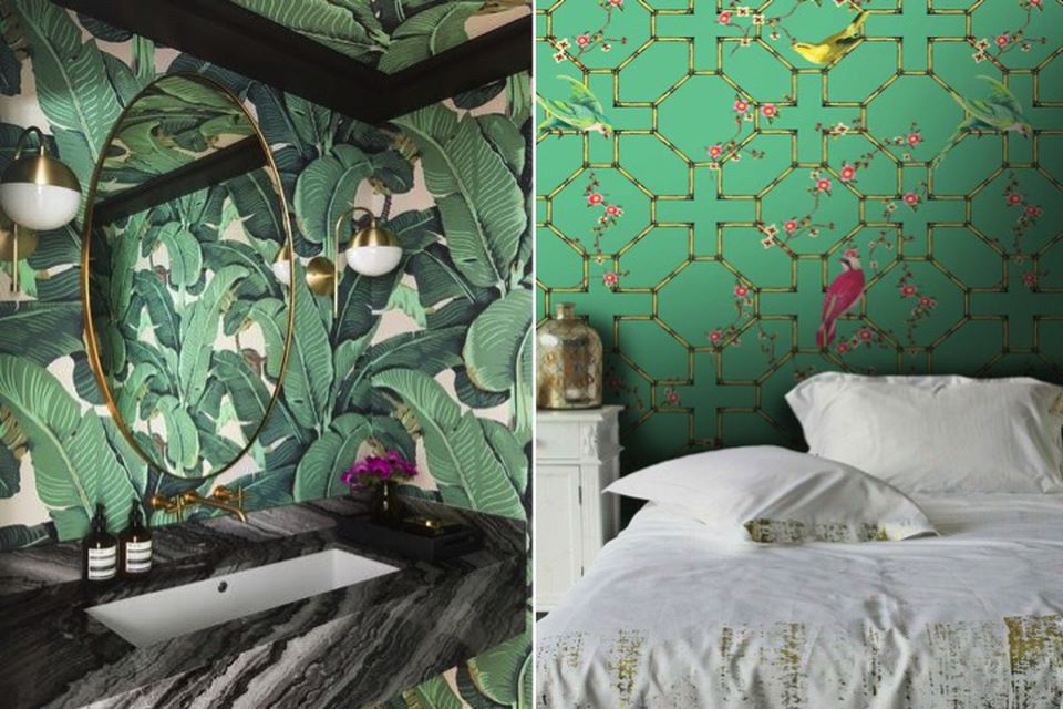 emerald green, designer tips, colour tips, wallpaper, emerald green wallpaper